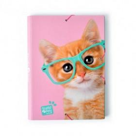 CAJA 500 LADRILLOS